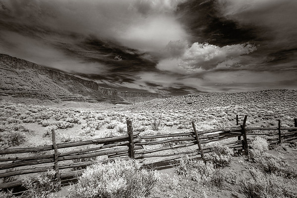 Field in Infrared, outside Moab Utah